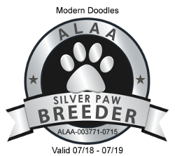 Modern Doodles ALAA Silver Paw